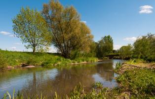Flusslandschaft 2012/13: Helme