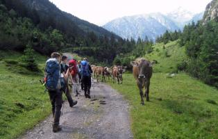 Klassenfahrt einmal anders: Wanderung von Hannover in die Alpen